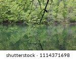 bolu  yedig ller national park  ... | Shutterstock . vector #1114371698