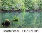 bolu  yedig ller national park  ... | Shutterstock . vector #1114371704