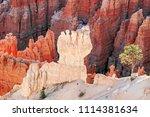 bryce canyon national park ... | Shutterstock . vector #1114381634