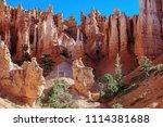 bryce canyon national park ... | Shutterstock . vector #1114381688
