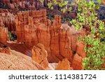 bryce canyon national park ... | Shutterstock . vector #1114381724