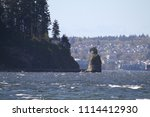 a view of siwash rock as seen... | Shutterstock . vector #1114412930