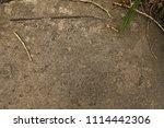 texture of asphalt with dry...   Shutterstock . vector #1114442306