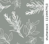 rosemary and sage watercolor... | Shutterstock . vector #1114447913