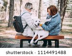happy lesbian couple sitting... | Shutterstock . vector #1114491488