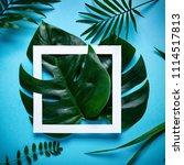 frame of tropical leaves... | Shutterstock . vector #1114517813