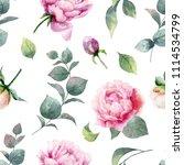 watercolor hand painting... | Shutterstock . vector #1114534799