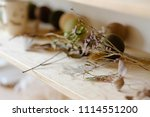 natural herbal eco rustic decor.... | Shutterstock . vector #1114551200