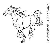vector line art running horse... | Shutterstock .eps vector #1114576076