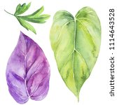 tropical leaves. watercolor... | Shutterstock . vector #1114643528