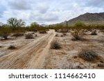 early morning sonora desert... | Shutterstock . vector #1114662410