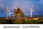 a coconut tree in the middle of ... | Shutterstock . vector #1114709930