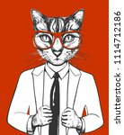 vector illustration of a cat in ... | Shutterstock .eps vector #1114712186
