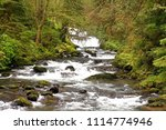 Sweet Creek, Sweet Creek trail, Siuslaw National Forest, Oregon, USA