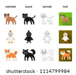 entertainment  farm  pets and... | Shutterstock .eps vector #1114799984