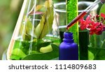 scientist with natural drug... | Shutterstock . vector #1114809683