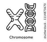 chromosome icon vector isolated ... | Shutterstock .eps vector #1114873670