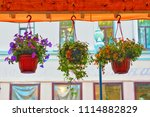 a hanging flower pot with many... | Shutterstock . vector #1114882829