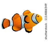 anemone fish isolated on white. ... | Shutterstock .eps vector #1114886549