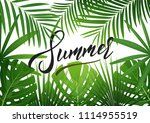 summer. tropical background... | Shutterstock .eps vector #1114955519