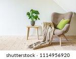 beige armchair with a green... | Shutterstock . vector #1114956920