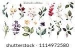 set watercolor elements  ... | Shutterstock . vector #1114972580