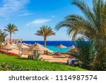 sunny resort beach with palm... | Shutterstock . vector #1114987574