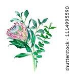 bouquet of watercolor green... | Shutterstock . vector #1114995590