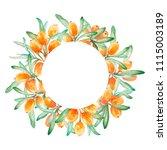 hand drawn watercolor circle...   Shutterstock . vector #1115003189