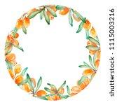 hand drawn watercolor circle...   Shutterstock . vector #1115003216