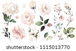 Stock photo set watercolor elements of roses collection garden flowers leaves branches botanic 1115013770