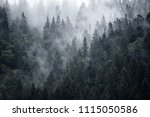 misty landscape with fir forest ... | Shutterstock . vector #1115050586