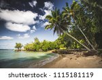 palm tree in a nice quiet bay ... | Shutterstock . vector #1115181119