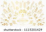 bloom collection. set of hand... | Shutterstock .eps vector #1115201429