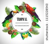 tropical round composition.... | Shutterstock .eps vector #1115228543