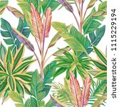 exotic tropical composition... | Shutterstock .eps vector #1115229194