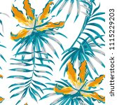 rare tropic flowers orange...   Shutterstock .eps vector #1115229203