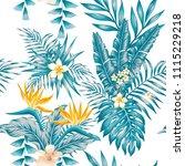 trendy exotic composition... | Shutterstock .eps vector #1115229218