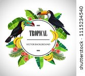 tropical round composition....   Shutterstock .eps vector #1115234540