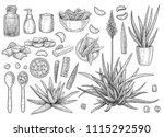 aloe vera collection ... | Shutterstock .eps vector #1115292590
