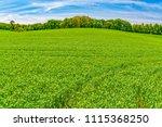 horizontal shot of a bright...   Shutterstock . vector #1115368250