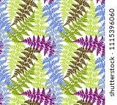 fern frond herbs  tropical... | Shutterstock .eps vector #1115396060