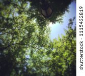 social media like photo of... | Shutterstock . vector #1115432819