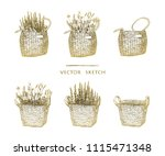 vector illustration. wicker... | Shutterstock .eps vector #1115471348