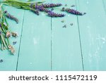 pink and purple lavender... | Shutterstock . vector #1115472119