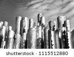 sibelius monument in helsinki ... | Shutterstock . vector #1115512880