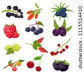 set berries isolated on white... | Shutterstock .eps vector #1115514410