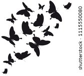 black butterfly  isolated on a... | Shutterstock .eps vector #1115550080