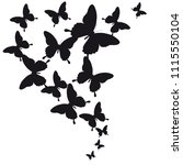 black butterfly  isolated on a... | Shutterstock .eps vector #1115550104