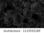 black roses isolated on a black ... | Shutterstock . vector #1115552189